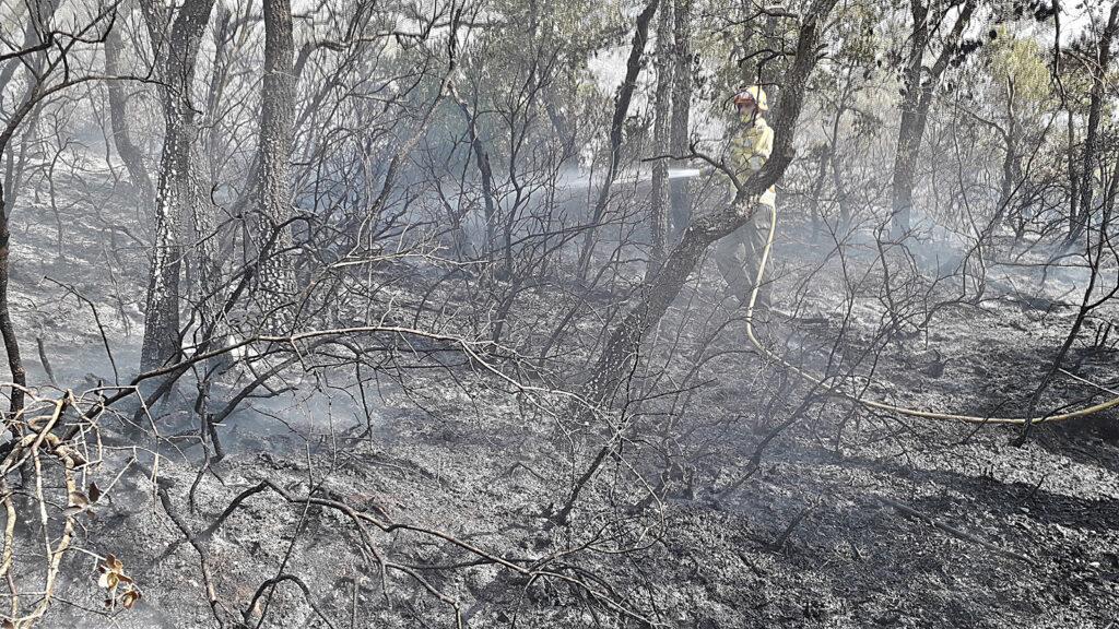 Incendi Santa Coloma de Quralt